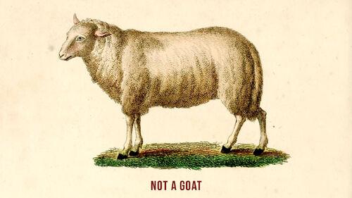 Goat Simulator Artwork 3.jpg