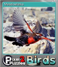 Pixel Puzzles 2 Birds Foil 7.png