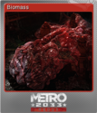 Metro 2033 Redux Foil 1