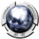 Pinball Arcade Badge 2