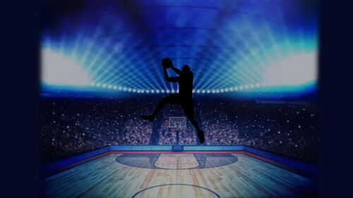 Basketball Pro Management 2015 Artwork 4.jpg