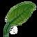 Storm Emoticon leaf