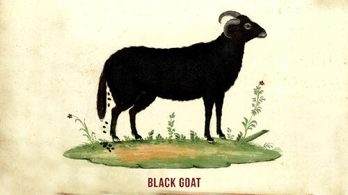 Goat Simulator Artwork 1.jpg