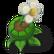 The Tiny Tale 2 Emoticon ttt flower