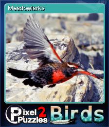 Pixel Puzzles 2 Birds Card 7.png