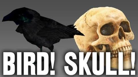 BIRD! SKULL!