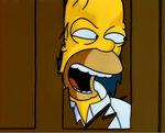 Homer shiningspoof.jpg