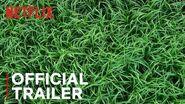 In the Tall Grass Official Trailer Netflix