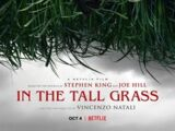 In the Tall Grass (film)