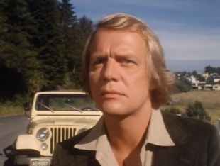 Miniseries (1979)
