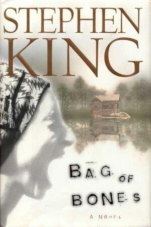 Bag of Bones Cover.jpg
