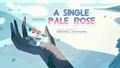 A Single Pale Rose 000