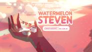 Watermelon Steven 000