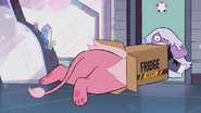 Lion Loves to Fit in a Box 021