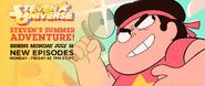 Steven's Summer Adventure Promo