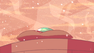 Steven's Lion (221)