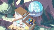 Bluebird 081