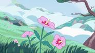 Steven's Dream 001