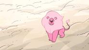 Steven's Lion (132)