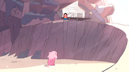 Steven's Lion (130)