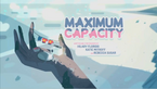Maximum Capacity.png