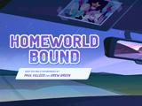 Homeworld Bound/Gallery