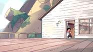 Steven's Lion (207)
