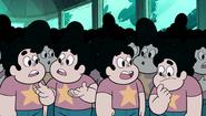Steven and the Stevens 241