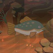 Fish In Water Model Sheet