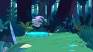 Island Adventure (045)