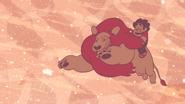 Steven's Lion (241)