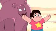 Steven's Lion (087)