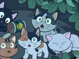 Котята из леса