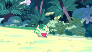 Super Watermelon Island 009
