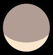 Pebble Foot Gemstone