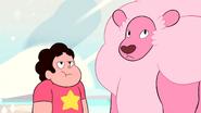 Steven's Lion (264)