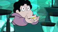 Steven and the Stevens 216