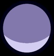 Pebble Nose Gemstone