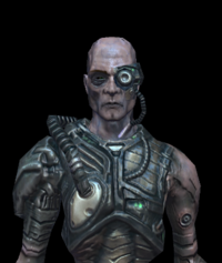 Borg Ensign 03.png