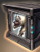 Ground Non-Combat Pet Pack - Jackal Mastiff Puppy icon.png