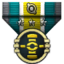 Expert Engineer icon.png