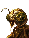 Doff Unique Sf Xindi Insectoid M 04 icon.png