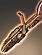 Delphic Antiproton Full Auto Rifle icon.png