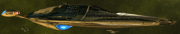 USS Tomlinson.png