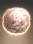 Polygeminus grex stahl icon.png