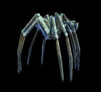 Ice Spider 01.png