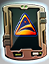 Specialization Qualification - Command icon.png