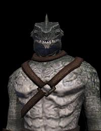 Gorn Commander Male 04.png