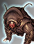 Tardigrade Companion icon.png