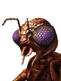 Doff Unique Sf Xindi Insectoid M 05 icon.png